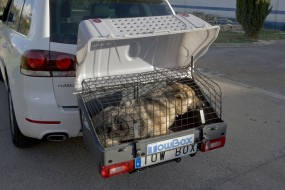 klatka dla psa Prima Pet Fińska klatka ocynk