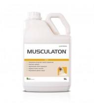 Musculaton